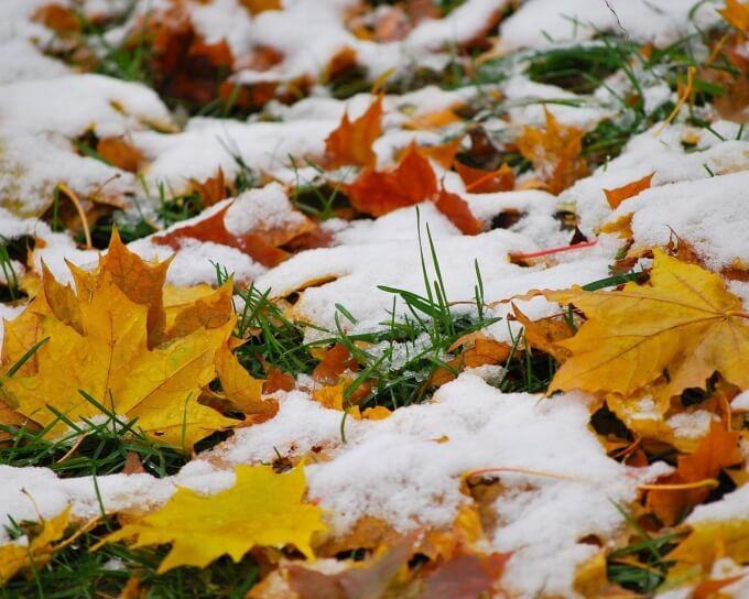 Фото: Gubkinskiy.com